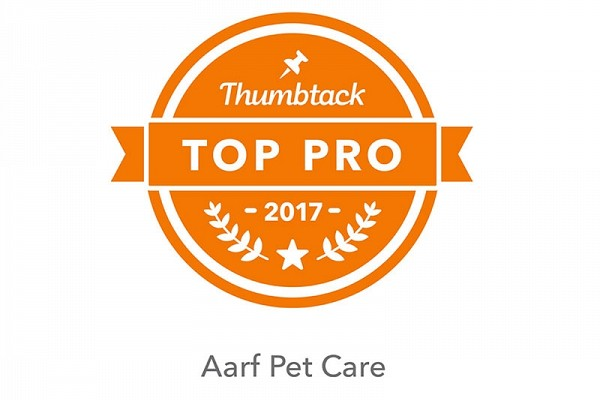 We've Been Named a Top Pro!
